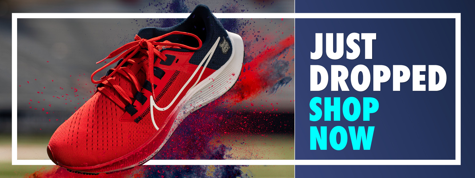 Arzona Nike Shoe Just Dropped